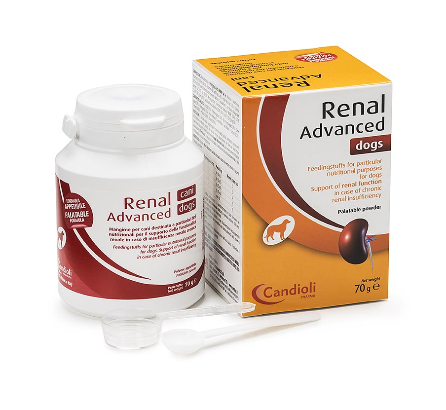 Renal Advanced Dogs 70g