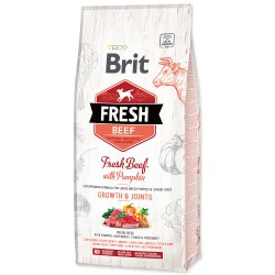 Brit Fresh Beef with Pumpkin Puppy Large 12kg