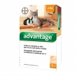 Advantage 40 10% 1x0,4ml Cat 0-4kg