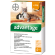 Advantage 40 10% 4x0,4ml Cat 0-4kg